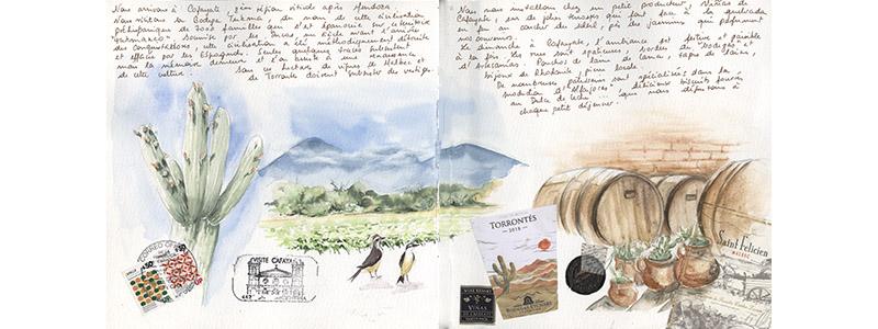 Carnet de voyage en Argentine 23