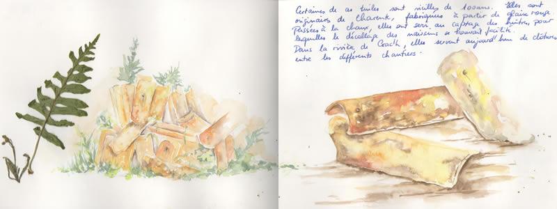 Carnet de voyage à Carnac. 14