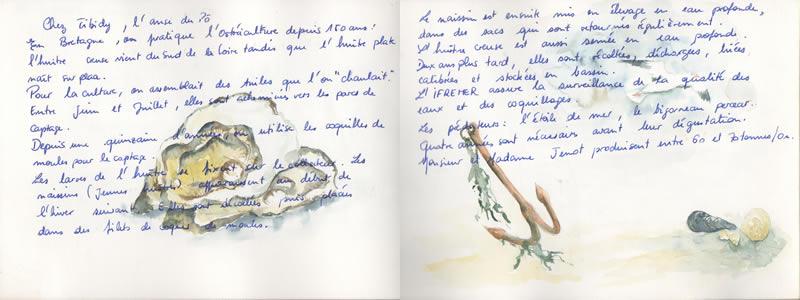 Carnet de voyage à Carnac. 5